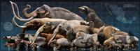 La extinción de megafauna en el Pleistoceno tardío no se puede atribuir a una sola causa porque no hay evidencias de ello, sino a un conjunto de variables que llevaron a su desaparición, sostiene el paleontólogo José Rubén Guzmán Gutiérrez.