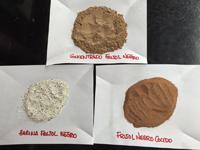 En la imagen se muestra el concentrado de proteína de frijol, producto fino y de alta calidad, cuyo proceso para su obtención se encuentra en trámite de patente. Los otros dos productos que le acompañan, harina de frijol negro y frijol negro molido, son polvos con diferentes texturas y cualidades.