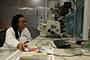 Rocío Berenice Domínguez Cruz, en su laboratorio del Centro de Investigación en Materiales Avanzados (Cimav), donde trabaja en el  desarrollo de sensores electrónicos para monitorear parámetros médicos presentes en el aliento del paciente diabético. La investigadora obtuvo una de las Becas para Mujeres en la Ciencia L´Oréal-Unesco-Conacyt-AMC 2018.