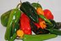 Los chiles son un ingrediente esencial de la comida tradicional mexicana, y sus extractos pueden ser utilizados para inhibir la actividad de algunas bacterias causantes de enfermedades.