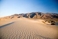 La desertificación y la sequía son problemas que pueden ser enfrentados con conocimiento y tecnología.
