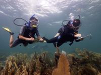Investigadoras evaluando la salud de los arrecifes de Puerto Morelos.