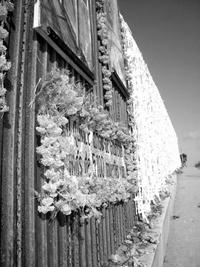 Muro fronterizo de Tijuana-San Ysidro.