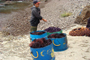 Buceo de erizo rojo y morado en el polígono 2, de exclusividad marina. Puerto Los Arbolitos, Baja California.