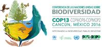 En la 13ª Conferencia de las Partes (COP), celebrada en Cancún, Quintana Roo en 2016, se estrecharon relaciones con la Organización de las Naciones Unidas para la Alimentación y la Agricultura (FAO).