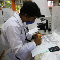 Estudiantes en las prácticas de laboratorio en el Instituto Tecnológico de Chetumal.