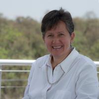Es importante desarrollar más laboratorios en nuestro país que evalúen la calidad del agua para consumo humano, dijo la doctora Marisa Mazari Hiriart, investigadora del Instituto de Ecología de la UNAM e integrante de la Academia Mexicana de Ciencias.