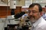 El doctor Raúl Aguilar, investigador del Instituto de Fisiología Celular de la UNAM y miembro de la Academia Mexicana de Ciencias, emplea técnicas moleculares y electrofisiológicas para rastrear los orígenes y la expresión de los ritmos circadianos en el cerebro.