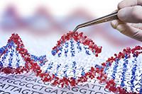 Una ola de críticas y reacciones de la comunidad científica internacional provocó la noticia dada a conocer por el investigador chino He Jiankui, quien aseguró haber modificado el ADN, utilizando la técnica de CRISPR-Cas, de unas gemelas nacidas hace unas semanas para que fueran resistentes a una eventual infección por VIH.
