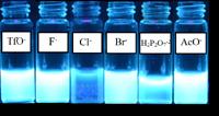 Efecto de la presencia de varios aniones sobre la fluorescencia del quimiosensor.