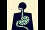 Diversos estudios sugieren que la urbanización de las poblaciones lleva consigo una disminución de la diversidad de la microbiota intestinal, lo cual está asociado al aumento de las enfermedades modernas; si se logra introducir o alcanzar la diversidad máxima se podría disminuir la incidencia de padecimientos crónicos como la obesidad y el síndrome metabólico.
