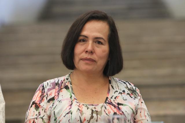 Victoria Pando Robles, investigadora adscrita al Instituto Nacional de Salud Pública.