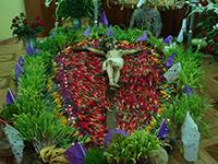Un Cristo en la cruz adornado para la celebración de la Semana Santa en Zaachila, Oaxaca, ejemplo del uso tradicional de las plantas en las ceremonias religiosas en poblaciones mexicanas.