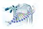 La farmacogenómica es una herramienta de la medicina personalizada que busca asignar el tratamiento adecuado a la persona indicada y en la dosis apropiada de acuerdo con la configuración genética de cada paciente.