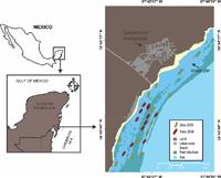 En la imagen se muestra la localización de la zona y los sitios de muestreo en los años de estudio sobre los arrecifes de coral de Mahahual, Quintana Roo, México.