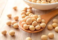 La soya es uno de los alimentos que tienen efectos positivos en la salud de los individuos; se trata de una leguminosa que posee sustancias bioactivas que ayudan a disminuir la resistencia a la insulina.