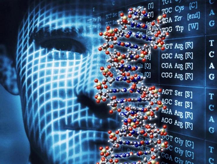 La bioinformática es una herramienta de gran utilidad para conocer mejor el genoma humano y la predisposición genética a padecer cáncer y ayuda a atender con mayor precisión este padecimiento.